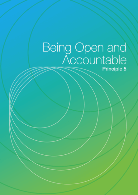 Being Open and Accountable DIY cover