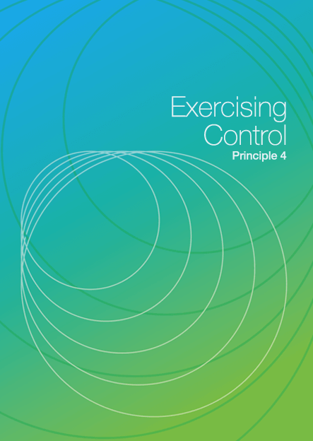 Exercising Control DIY cover