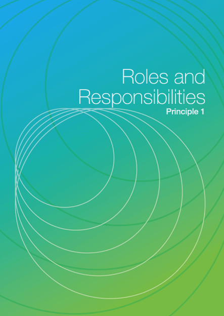 Roles and Responsibilities DIY cover